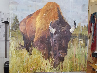 "Bison III, 48""x48"", oil on linen"