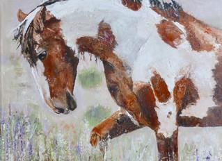 Wild Mustang, oil on linen, 16x16
