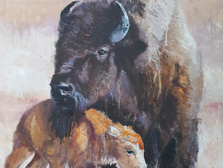 Bison and baby,  oil painting, 36x48