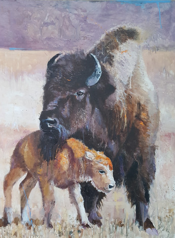 Bison & Baby