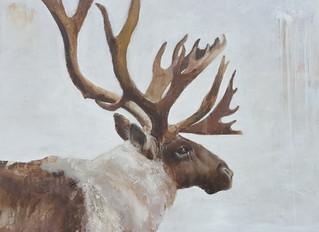 Caribou, 24 x 24, oil on linen