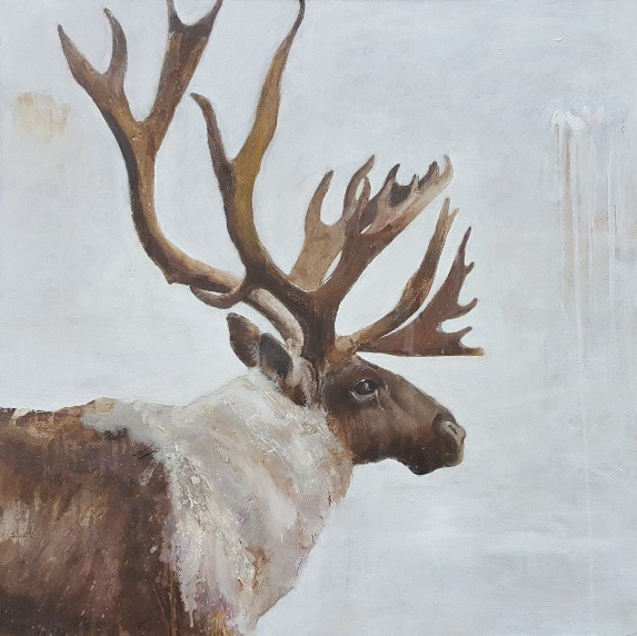 Caribou, oil on linen