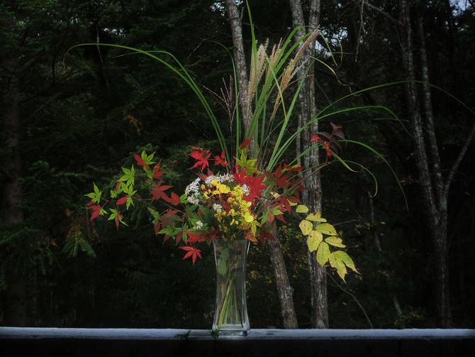 芸術の秋、食欲の秋、紅葉が始まった嬬恋の秋、ああ、恋がしたいわ。