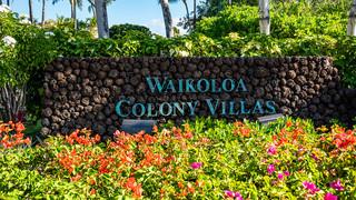 1-5-Colony Villas 1.jpg