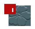 image_logo_flower.png