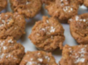 Better Vegan Grain-Free Gluten-Free Coconut Muffins