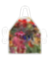 image_206_255_apron_5.png