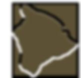 image_163_158_BI_olive.png