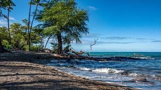1-3-Beach 1.jpg