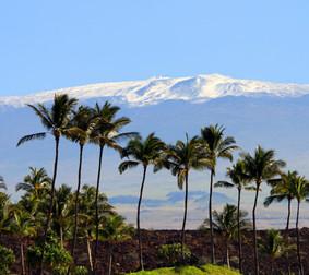 Winter in Hawaii