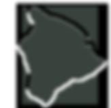 image_163_158_BI_green.png