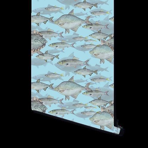 BLUE SHOAL OF FISH WALLPAPER