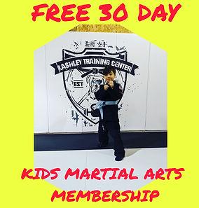 Martial Arts special.jpg