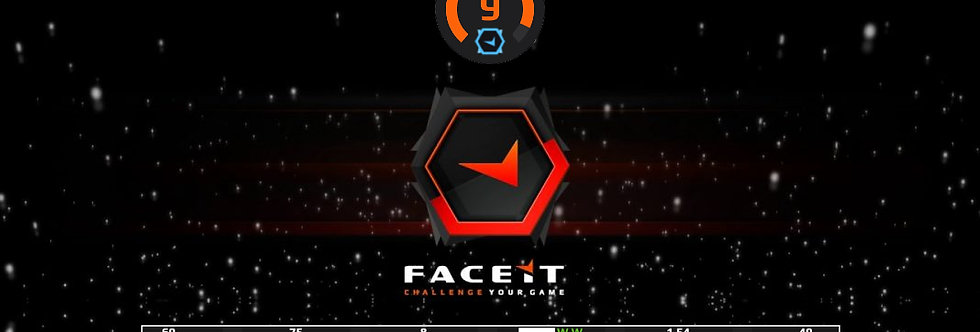 Faceit Level 9 | 1.54 K/D | 22Avg. Kills | Verified | Instant Delivery