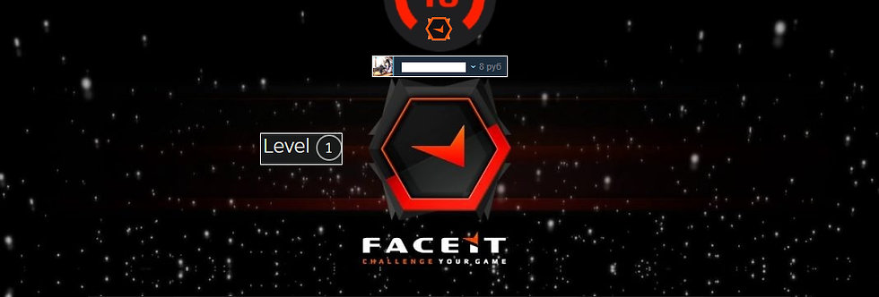 🎁 Faceit Level 10 | 1.40 K/D | Market Unlocked | Verified | Instant Delivery