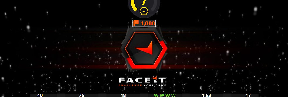 Faceit Level 7   2.28 K/D   91% Win Rate   Verified   Instant Delivery