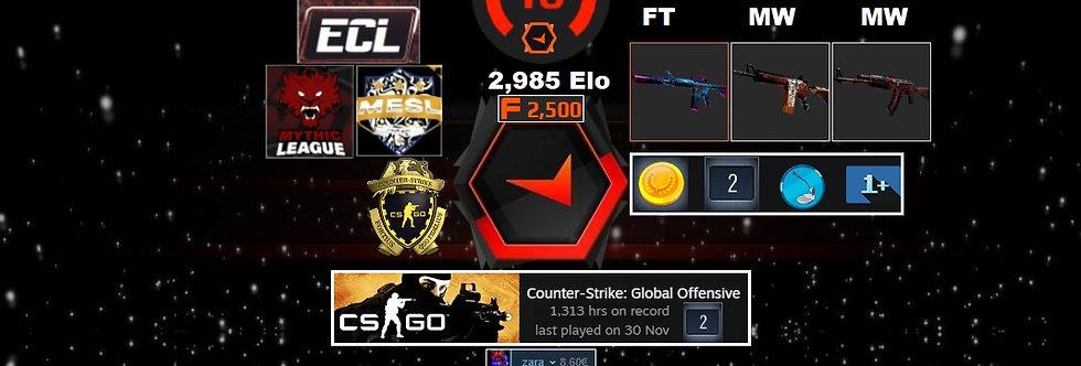 🌪️18'Faceit 2,985 Elo | 1161 Matches | 1,313 Hours | Market Unlocked Instant Dl
