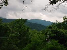 cabin view.jpeg