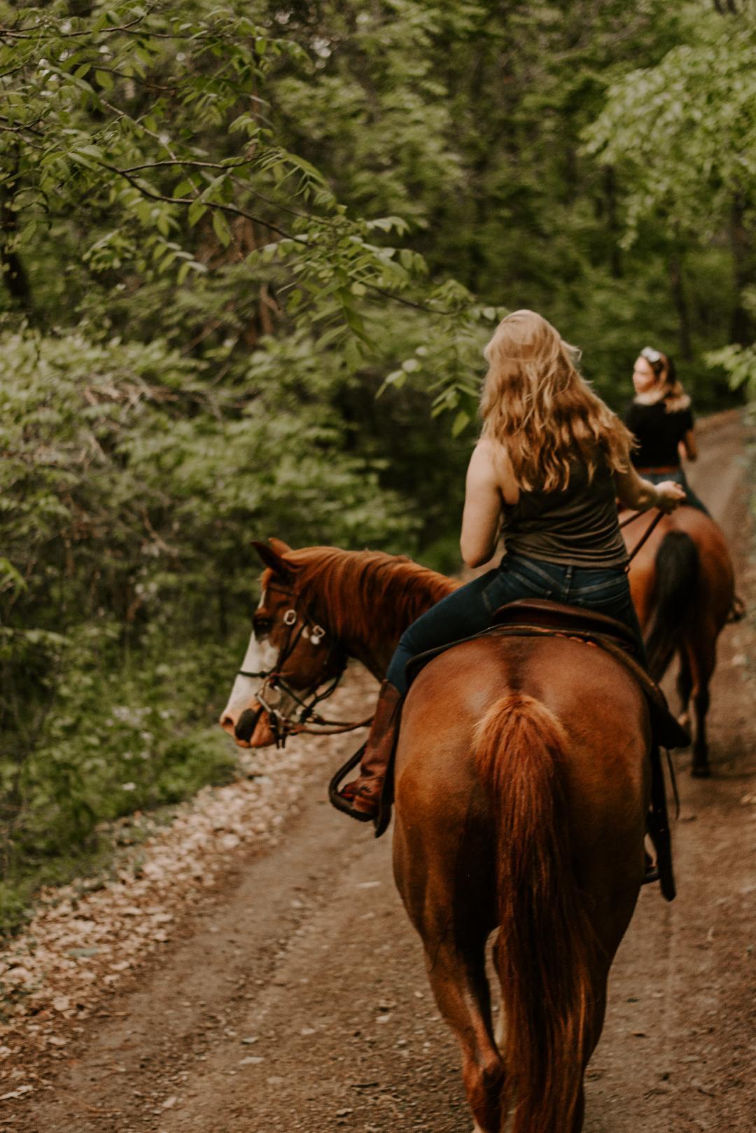 trail photo 1