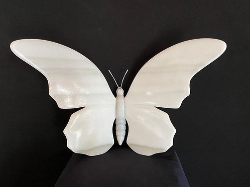 Butterfly white snow