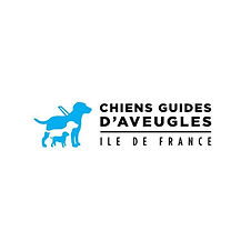 Chiens guides d'aveugles.JPG