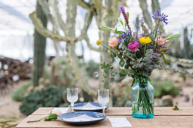 Styled shoot | Cactus Oase Ruurlo