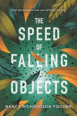 Speed of Falling.jpg