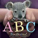ABCZooBorns.jpg