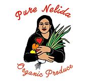 nelida NEW logo-03.png