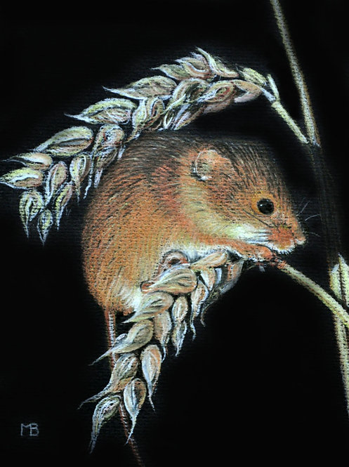 """Harvest Mouse"" SOLD"