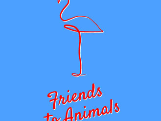 friends to animals: a new breed of songwriters