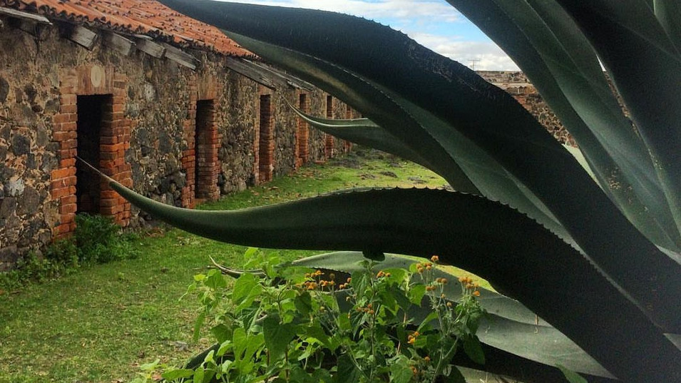 hacienda4.jpg
