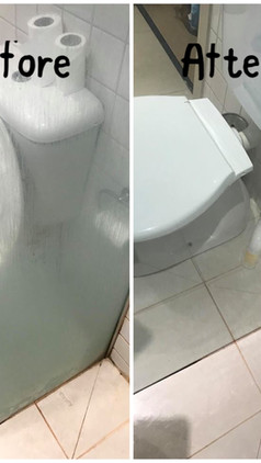 Glass and Toilet Cleaning