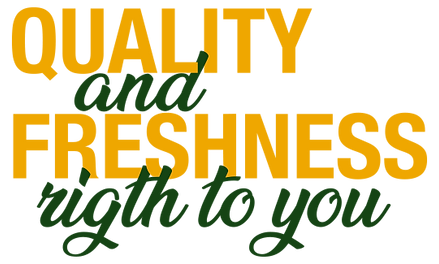 QUALITY AND FRESHNESS RIGH TO YOU.png