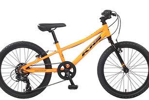 20-raptor-b-orange-1200-1024x631.jpg