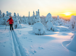 Woman cross country skiing in Lapland Fi