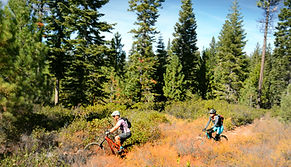 Mountain Bike in Truckee Tahoe. Bike Truckee is Truckee and Tahoe's premier bike rental outfitter.  We offer Ebikes, mountain bikes, comfort bikes, cruisers, trailabikes, and more! Reserve your bike today!