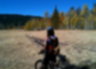 This is a long beginnier/ intermediate 17+ mile single track trail that ends at Boca Reservoir.  This is a great cross-country trail that melts out early and a great first Tahoe Mt Bike ride.  It can be shortened as it is a rolling out and back ride with a tough climb at the end before the reservoir.  Bike Truckee is Tahoe's premier bike shop and can help you plan your next bike adventure in Tahoe.