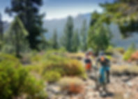 Tahoe and Truckee trails are world-class. Short but sweet! This is a great flow trail to lap several times or get a quick ride in on. It is a fairly easy climb to the top of the ridge and flows downhillwithgreat banked turns and optional hits and rock climbs. A must do for riders of all abilities. Bike Truckee can help you find the perfect single track for your next adventure in Tahoe.