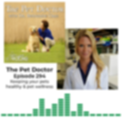 Janina Krumbeck The Pet Doctor Podcast email imag