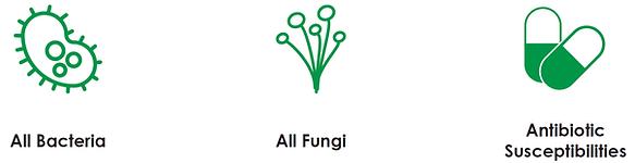 MiDOG Detects Bacteria Fungi Antibiotic Resistance