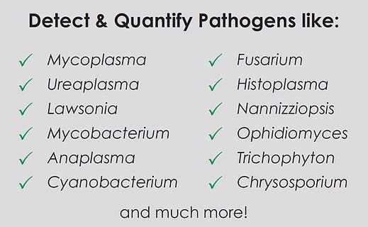 pathogens exotics.png