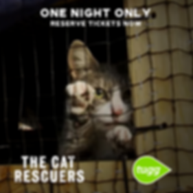 The Cat Rescuers Still 1 (1).png