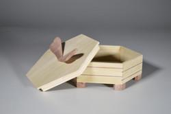 Octagonal Box