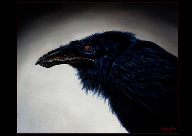 M. Darkside - Raven