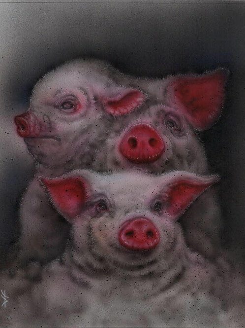 """""""Pile of Pigs"""" Dan Fisher"""