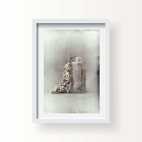 Flora 3 (Printed & Framed)