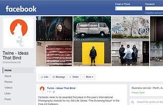 Twine - Ideas That Bind Facebook