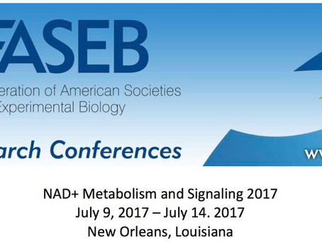 FASEB NAD+ meeting in New Orleans