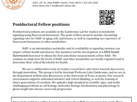 POSTDOC positions available